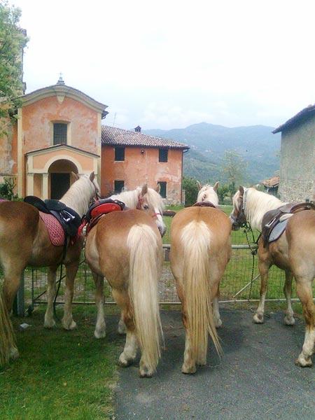 Circolo-Ippico-Montetermine-trekking-a-cavallo-07