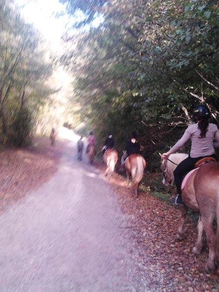Circolo-Ippico-Montetermine-trekking-a-cavallo-20