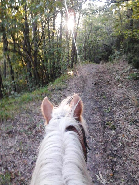 Circolo-Ippico-Montetermine-trekking-a-cavallo-21
