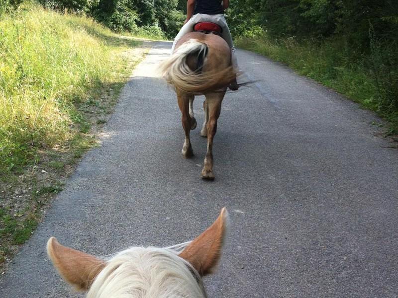 Montetermine-vacanze-a-cavallo-gallery-010