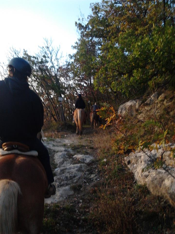 Motetermine-trekking-a-cavallo-Monte-Salvaro-02