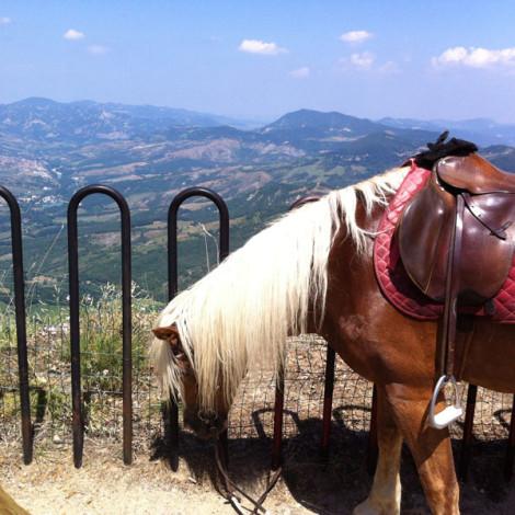 Trekking Santuario di Montovolo