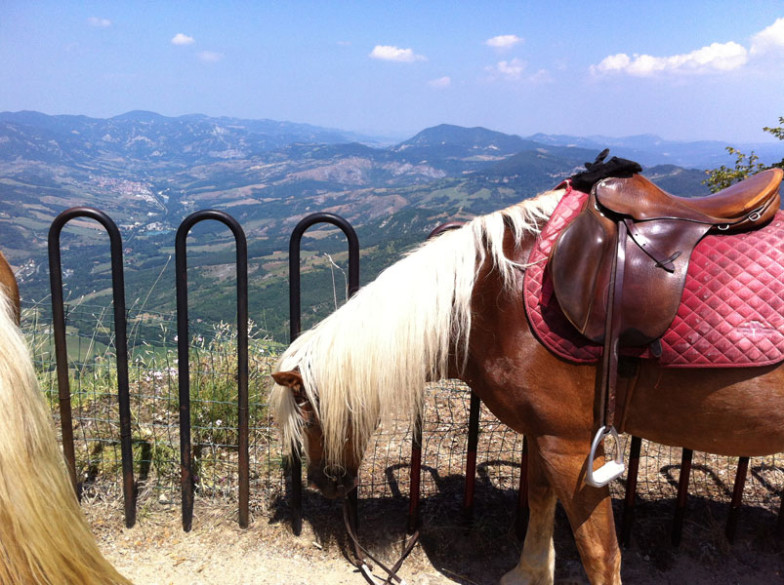 Motetermine-trekking-a-cavallo-Montovolo-01