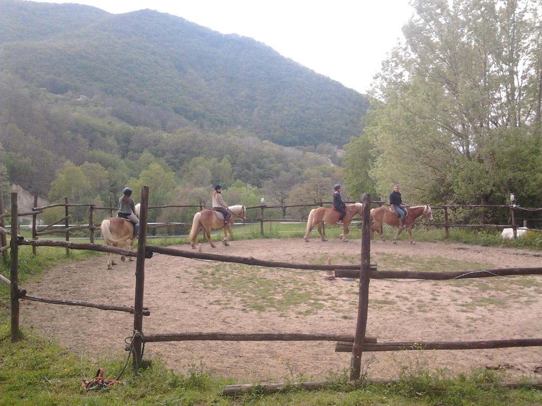 Circolo-Ippico-Montetermine-corsi-di-equitazione-bologna-01
