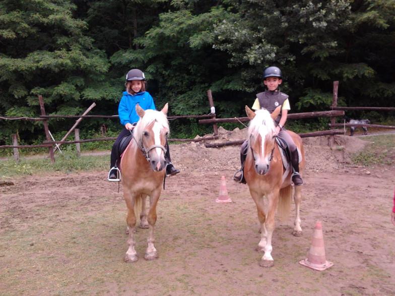 Lezione singola di equitazione
