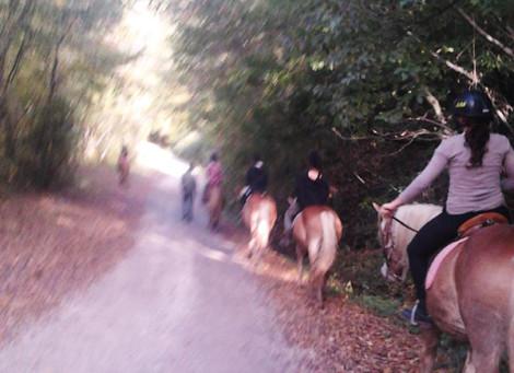 Trekking L'antico Borgo della Valle di Scascoli (Loiano)
