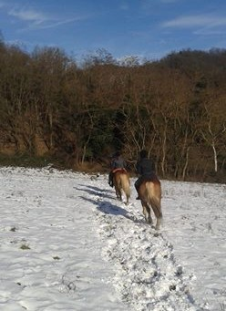 A Cavallo sulla neve!!!